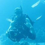 dive hurghada-diver-diving-dive-scuter-scuter dive-underwater-hurghada-red sea-egypt
