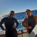 dive hurghada-diving-daily-dive-diver-boat-liveabord