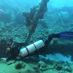 dive hurghada-diving-dive-diver-wreck-abu nuhas-red sea-sea-hurghada-egypt